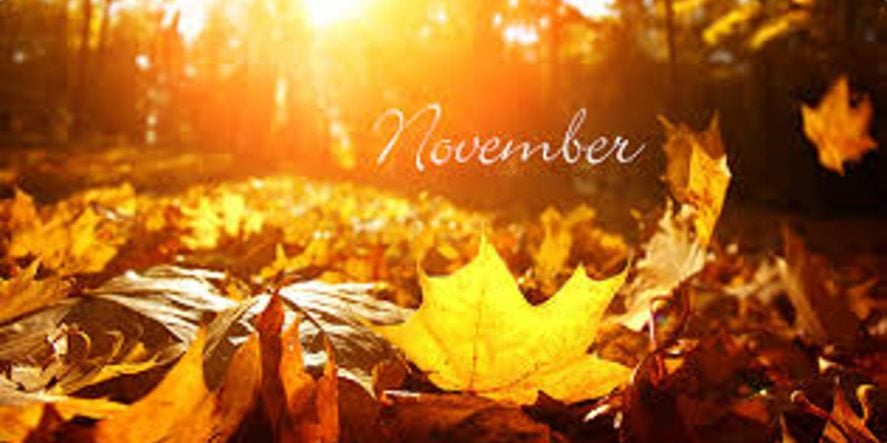 Things To Post On Social Media In November – Early November