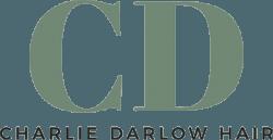 Charlie Darlow Hair