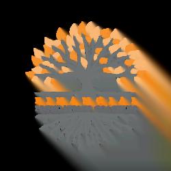 Financial Foundations Coaching